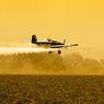 Ban Pesawat Hilang saat Mendarat, Rupanya Jatuh di Permukiman Warga