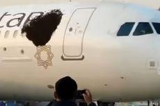 Serangan Gerombolan Lebah Tunda 2 Penerbangan Pesawat di India