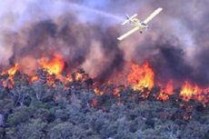 Petani Pertahankan Pola Tradisional, KLHK Cari Solusi Hentikan Pembakaran Lahan