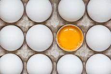 [KLARIFIKASi] Konsumsi Kuning Telur Mentah Diklaim Bisa Cerdaskan Anak