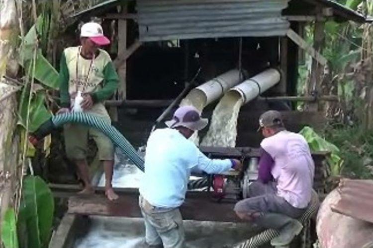 Agar Tetap Bertani di Musim Kemarau, Petani di Polewali Mandarsulawesi barat yang bosan menganggur slma musim kemarau memilih menyedot air dari sungai menggunakna mesin alkom agar mereka bisa menggarap lahan mereka di musim kemarau.