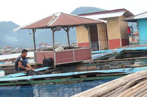 Puluhan Ton Ikan Mati di Cianjur Sepekan Terakhir, Petambak Rugi hingga Ratusan Juta Rupiah