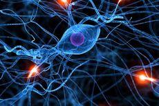 Penyakit Epilepsi Makin Banyak Terdeteksi
