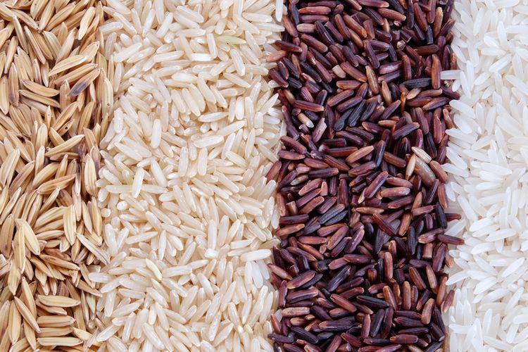 Ilustrasi jenis-jenis beras