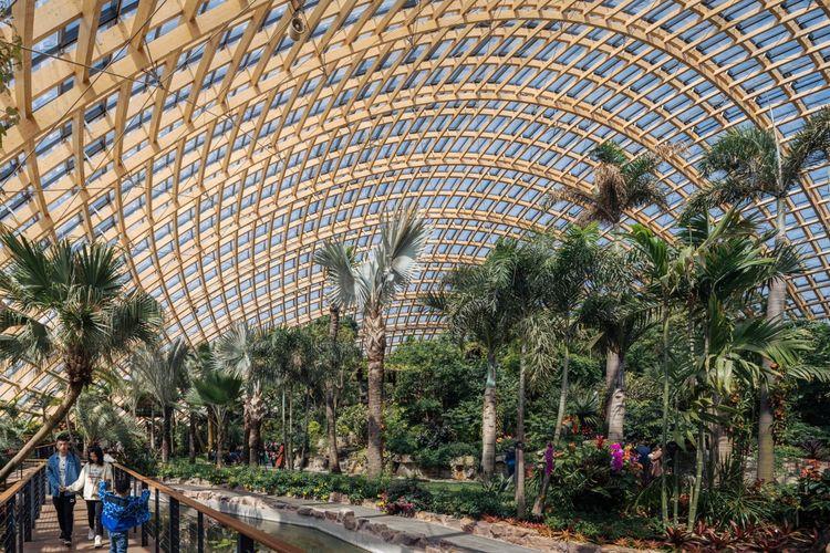Rumah Kaca Berkubah Raksasa Jadi Tempat Konservasi Tanaman di Danau Bekas Galian Batubara di China