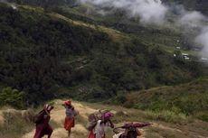 Noken, Ikon Papua