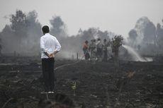 Kunjungan Jokowi di Riau, Rapat hingga Tinjau Lokasi Kebakaran Hutan