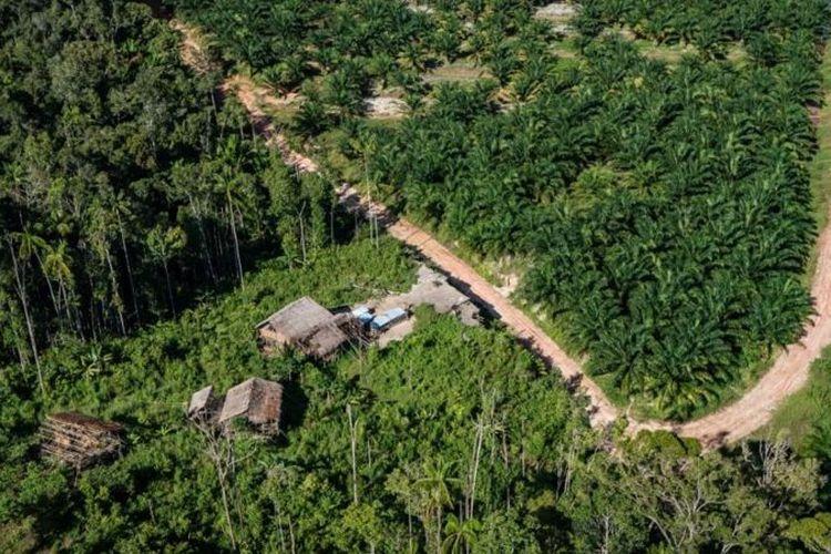 Pada 2015 marga pemilik hak ulayat sepakat untuk melepas hutan adat mereka dengan menerima ganti rugi Rp100.000 untuk tiap hektar hutan adat yang kini menjadi area PT Tunas Sawa Erma Blok-E seluas 19.000 hektar.