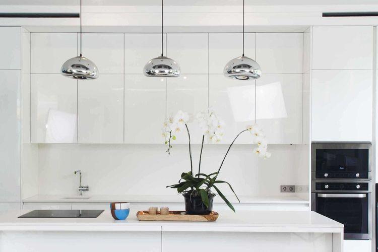 Tanaman anggrek di dapur minimalis karya MINT-DS