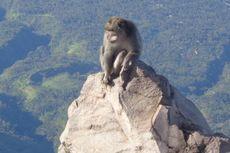 Waduh, Willem Sigar Jadi Korban Jambret di Puncak Gunung Agung