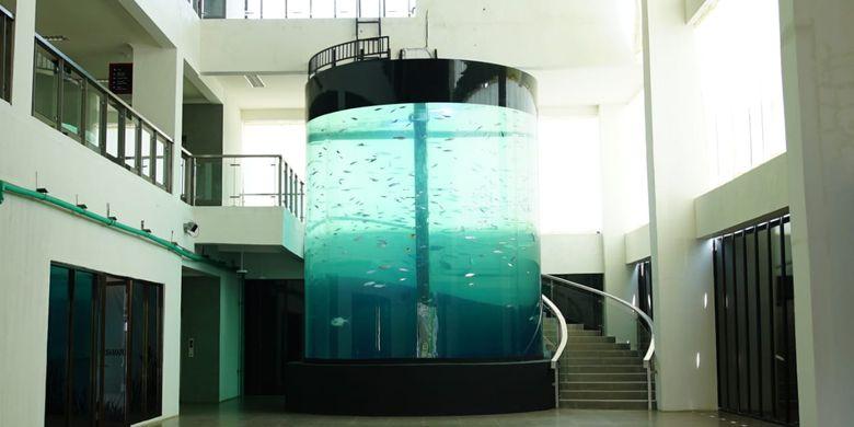 Salah satu akuarium yang ada di Pangandaran Integrated Aquarium and Marine Research Institute (PIAMARI) di Pangandaran, Jawa Barat (Jabar).
