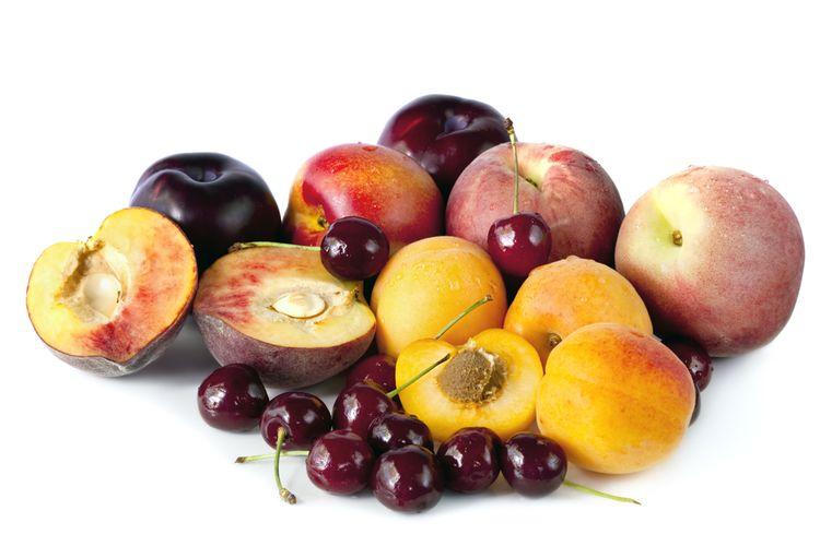 Ilustrasi stone fruits