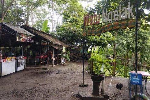 Desa Wisata Puton DIY, Belajar Kesenian hingga Favorit Turis Asing