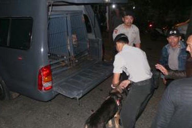 Anjing pelacak dilibatkan untuk mengendus jejak pelaku penembakan dua polisi di Pondok Aren, Tangerang Selatan, Jumat (16/8/2013) malam.