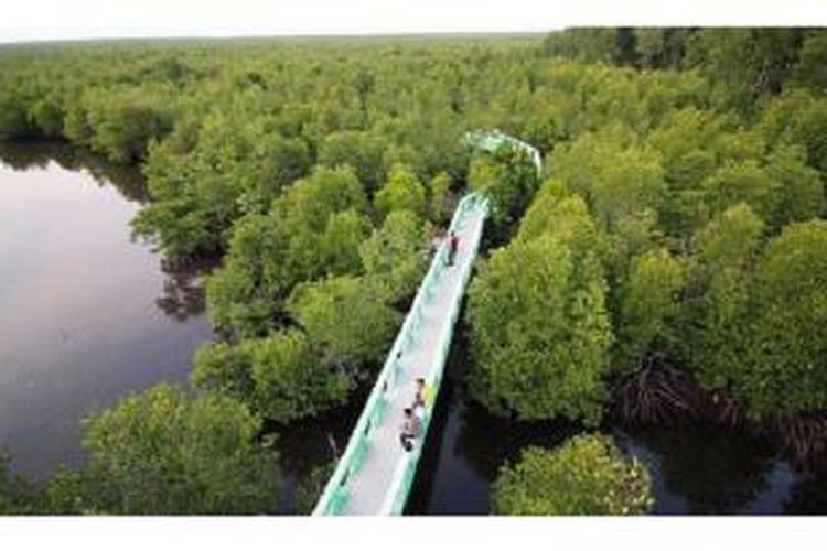 Suasana hutan mangrove di kawasan Kuala Langsa, Kota Langsa, Jumat (10/4). Langsa memiliki hutan mangrove sekitar 700 hektar. Pemerintah kota terus merawat dan menjaga kelestarian lingkungan hutan itu sebagai penyeimbang alam dan tempat rekreasi masyarakat setempat. Keberadaan hutan itu pun menjadi peneduh kota.