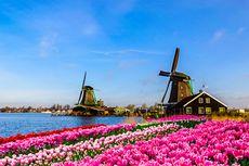 Beasiswa S2 Belanda StuNed Dibuka, Tanggung Biaya Kuliah dan Hidup