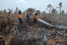 Kebun Sagu Warga Desa Binaan BRG di Kepulauan Meranti Terbakar