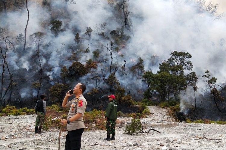 Asap hasil kebakaran hutan di Kawah Putih Ciwidey, Kabupaten Bandung, Jawa Barat, mengepul di antara pepohonan sekitar.