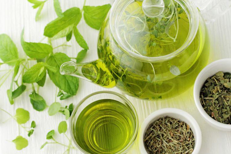 ilustrasi teh hijau