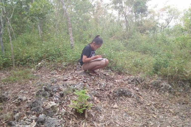 Seorang Pelajar Belajar di Gunung Temulawak, Desa Petir, Kecamatan Rongkop, Gunungkidul