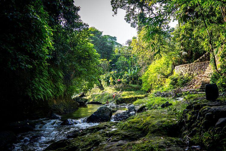 Ilustrasi sungai di Bali.