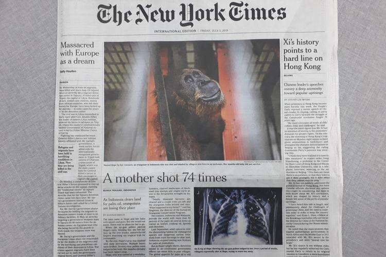 Berita tentang orangutan Hope di koran The New York Times