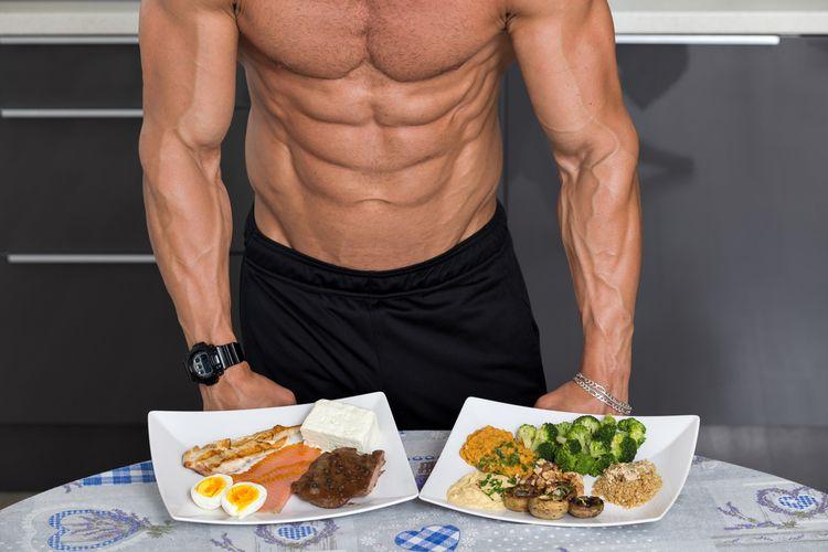 Ilustrasi otot dan protein