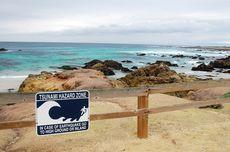 Ahli Tegaskan Banyak Ikan Minggir dan Laut Berbau Bukan Tanda Tsunami