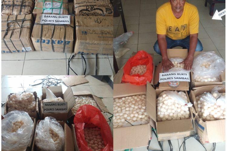 Barang bukti 4.255 telur penyu yang dikemas di dalam 6 kardus diamankan aparat Polres Sambas, Kalimantan Barat.