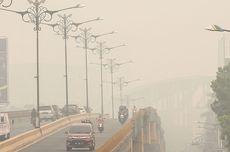 Riau Dikepung Kabut Asap, Greenpeace Nilai Situasi Mirip Karhutla 2015