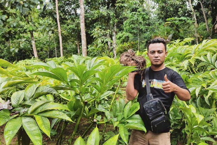 SUKSES—Sujito (30) salah satu petani milineal asal Desa Durenan, Kecamatan Gemarang, Kabupaten Madiun, Jawa Timur yang sukses membudidayakan porang.