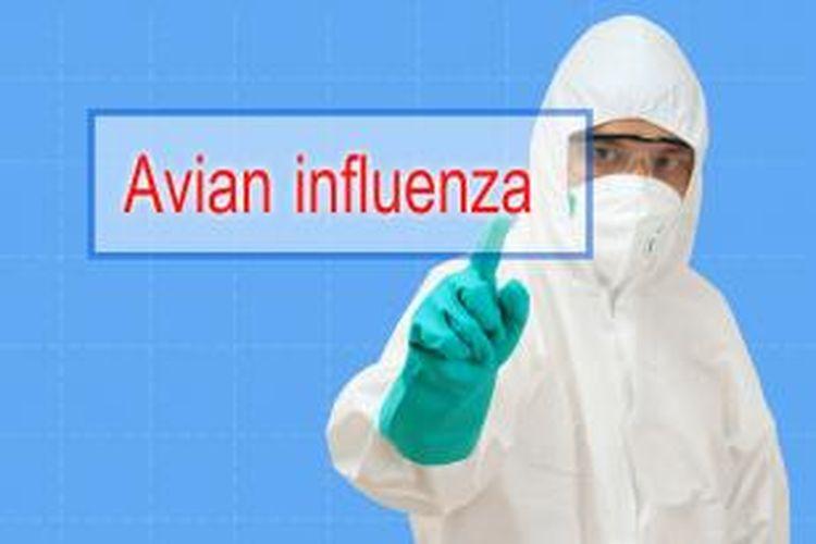 pencegahan penularan virus flu burung