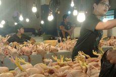 Ramadhan, Harga Ayam Potong Turun Rp 15.000