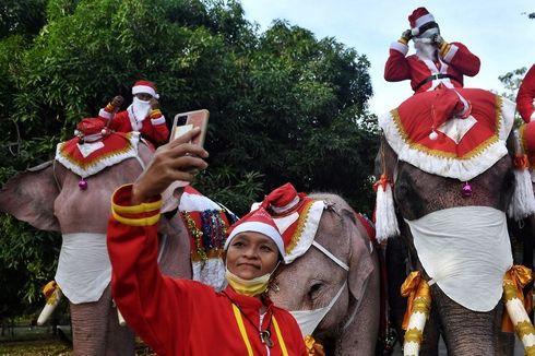 Perayaan Natal Thailand, Gajah Santa Sebarkan Pesan tentang Covid-19