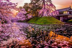 Selain Tokyo, Ada Alternatif Tempat Wisata di Jepang