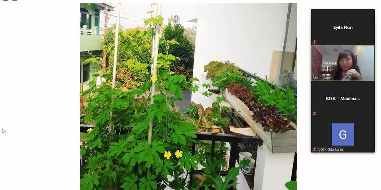 Tangkapan layar talang yang digunakan Sita untuk menanam sayuran di rumahnya agar mendapatkan sinar matahari yang cukup