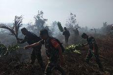 Sekitar 50 Hektare Hutan Produksi Konservasi di Pesisir Selatan Sumbar Terbakar