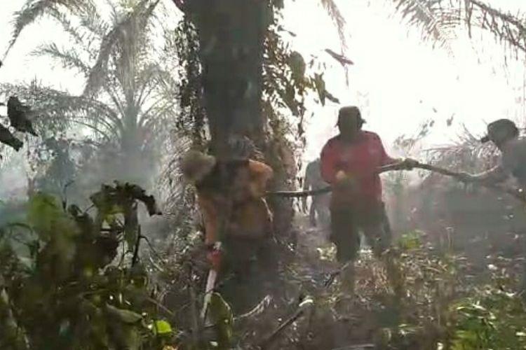 Petugas Manggala Agni Daops Kota Dumai dan kepolisian sedang berjibaku memadamkan api di Desa Sukarjo Mesim, Kecamatan Rupat, Kabupaten Bengkalis, Riau, Rabu (26/2/2020).