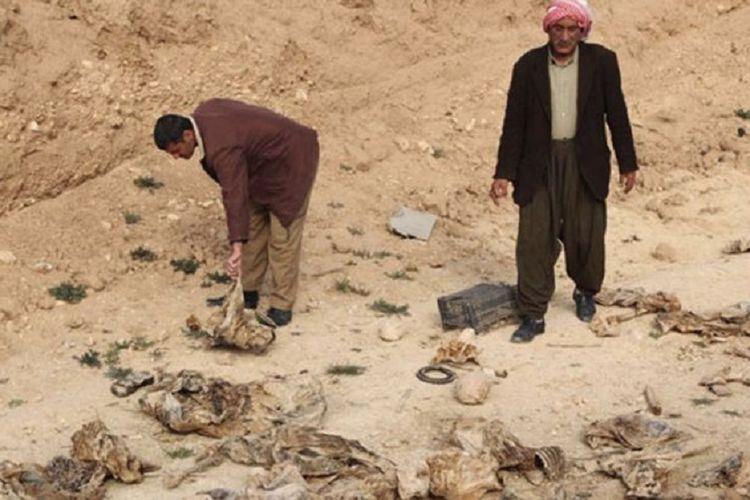 Penemuan kuburan massal berisi jenazah tanpa kepala yang diduga korban ISIS di kawasan timur Suriah. Kuburan itu ditemukan di lokasi yang menjadi basis terakhir ISIS.