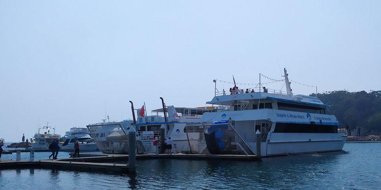 Kapal Moonshadow yang membawa wisatawan melihat lumba lumba di perairan Port Stephen, New South Wales, Australia.