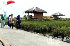 Kampung Wisata Sawah Pematang Johar, Wisata Selfie Sambil Nikmati Sawah