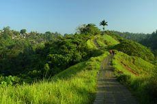 15 Kota Terbaik di Dunia, Ada Ubud Bali