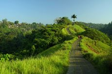 Itinerary 3 Hari di Ubud untuk Libur Akhir Tahun