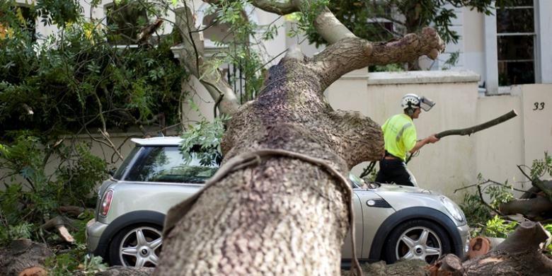 Petugas penyelamat berusaha memotong sebuah pohon besar yang tumbang dan menimpa sebuah mobil di London, Inggris, Senin (28/10/2013). Akibat badai yang menghantam Inggris, Belanda, Perancis, dan Jerman sedikitnya delapan orang tewas.