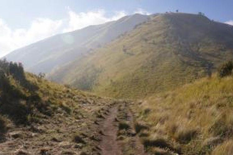 Ketika sampai di Pos Sabana Satu, Gunung Merbabu, alang-alang menghampar luas. Di belakang jalur, bukit-bukit berjajar indah.