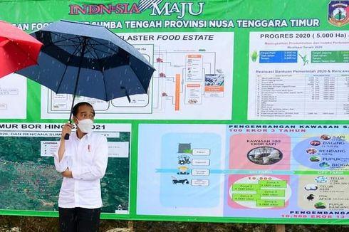 Lumbung Pangan di Sumba Tengah Diperluas hingga 10.000 Hektar, Jokowi: 34 Persen Kemiskinan Ada di Sini