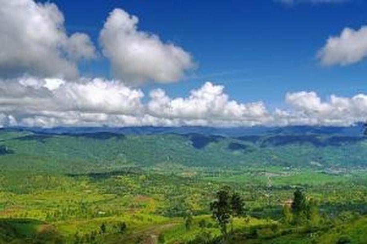 Taman Nasional Gunung Leuser.