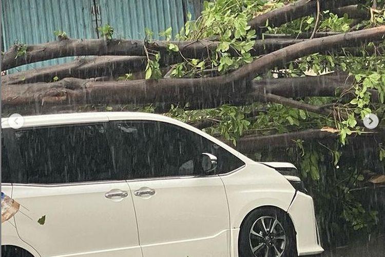 Mobil Erros Djarot tertimpa pohon di Tanah Kusir, Jakarta Selatan, Minggu (11/4/2021).