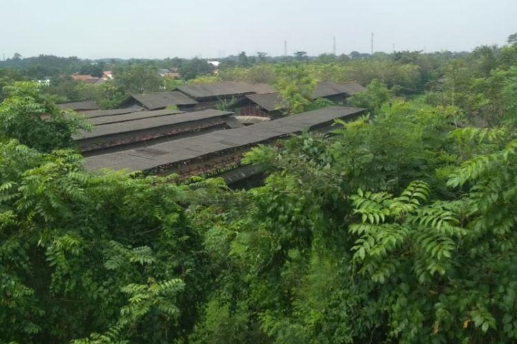 Peternakan Ayam di sebelah perumahan Citra Raya Kabupaten Tangerang