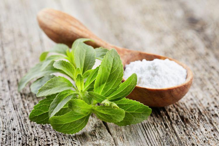 Ilustrasi stevia